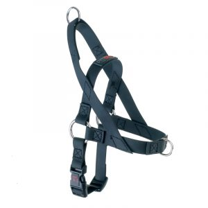 Freedom Harness